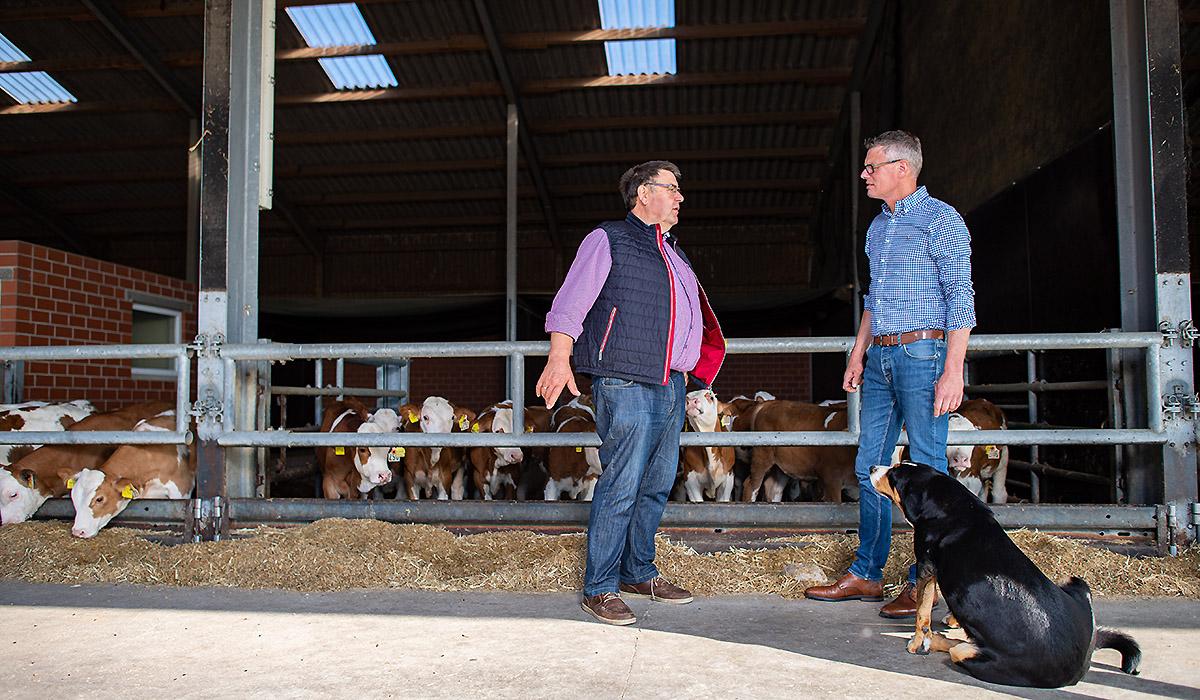 Ein Außendienstmitarbeiter der Venneker Gruppe steht mit einem Landwirt und dessen Hund vorm Rinderstall.